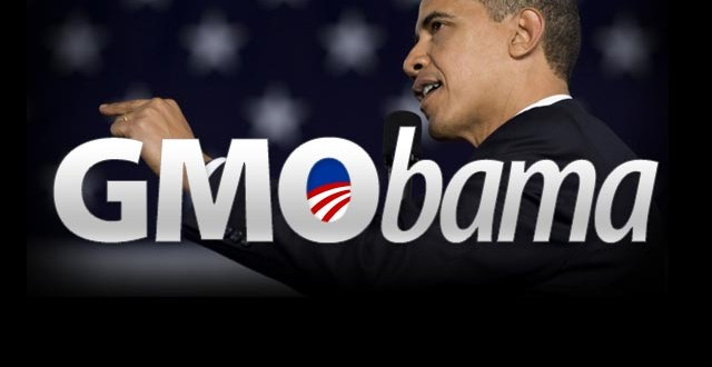 Le Monsanto Protection Act GMObama-640x330