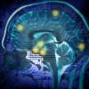 brain_chip