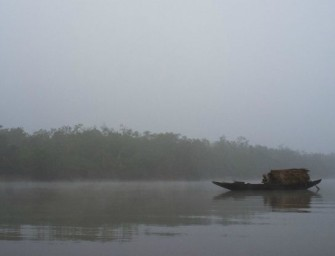 'Catastrophe': Oil Spill at Bangladesh World Heritage Site