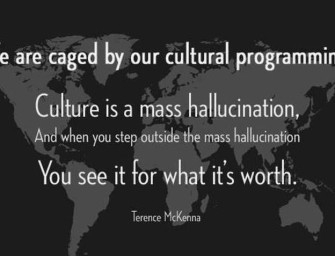 Enculturation, Cultural Programming, and Social Engineering.