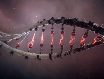 'Progress' Under Genetic Reprogramming Justifies 'Wiping Out Half of All Species' Under TechnoElite