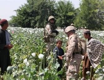 The Spoils of War: Afghanistan's Multibillion Dollar Heroin Trade